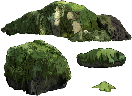 Illustration of collection of stones overgrown with moss