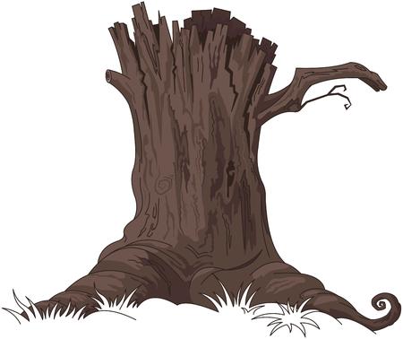 Illustration of tree stump