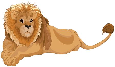 Illustration of gorgeous lion