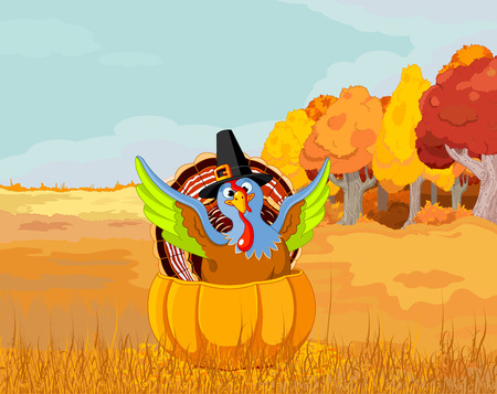 Illustration of cute Pilgrim turkey into pumpkin Illustration