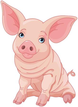Illustration of cute pig  Illustration