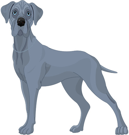 Illustration of a great dane dog Ilustração