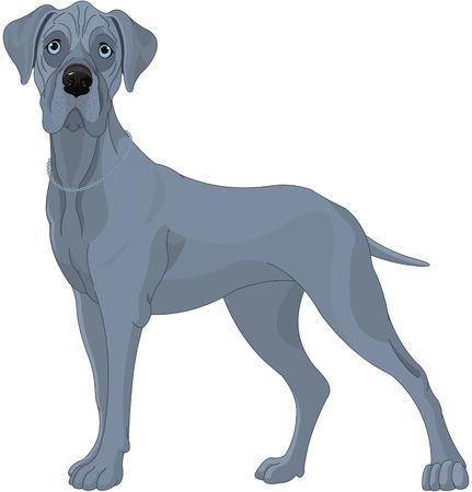 Illustration of a great dane dog Vettoriali