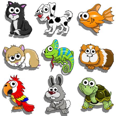 Pet Animals Illustration