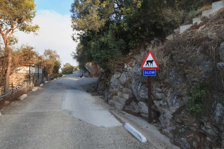 Road uphill to Gibraltar The Rock in front sign slow for monkeys