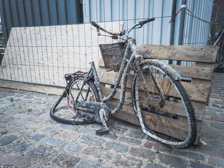Woman bicycle recovered bicycle from water Copenhagen city summer time