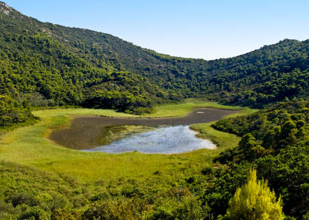 morass: Small swamp on island Mljet near Dubrovnik, Croatia.