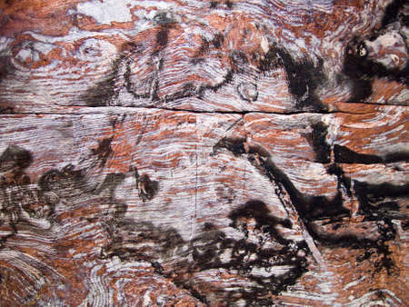 khazneh: Urn tomb wall texture  of Nabatean passage in Petra (Al Khazneh), Jordan.  Siq canyon. Stock Photo