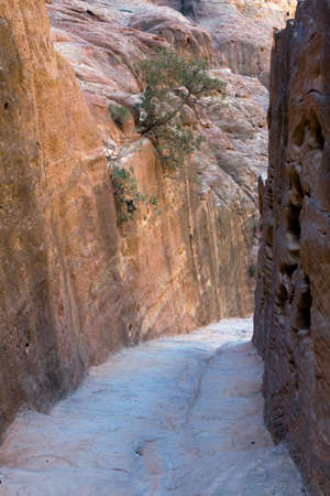 nabataeans: Narrowing of the High Place path  in Petra - Nabataeans capital city (Al Khazneh) , Jordan.
