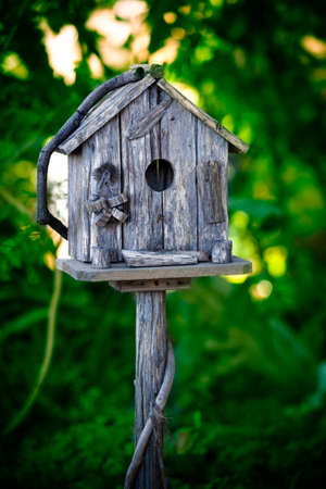 Small bird house in the forest photo