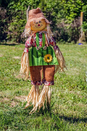Scarecrow on green background