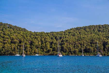 dalmatia: Mediterranean landcape on island Mljet near Dubrovnik, Croatia Stock Photo