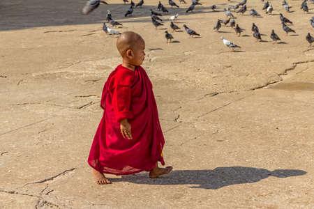 NZAUNG-U, MYANMAR - FEBRUARY 22: Young little  Buddhist monk going to pray at the the Shwezigon Pagoda on February 22, 2012 in Nyaung-U, Myanmar.