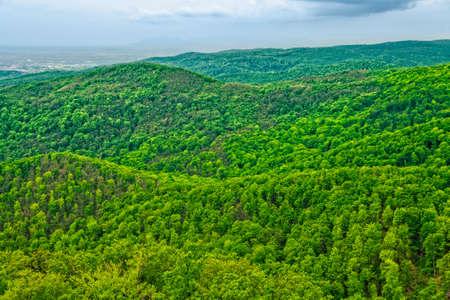 trompo de madera: Las colinas y los bosques, mautain Medvednica cerca de Zagreb, Croacia Foto de archivo