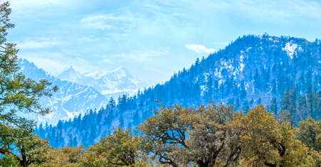 tallness: Panoramic view of Himalayan landscape in springtime, India.