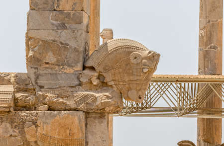 architectural tradition: Taurus head part of the old wall of the ruins of old city Persepolis.