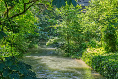 english famous: Artificial river flowing thru the English garden famous city park in Munich. Stock Photo