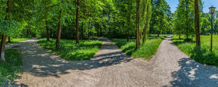 garden city: Panoramic view of the path crossroads in the English garden, the famous city park in Munich.