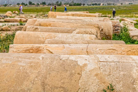 architectural tradition: The remains of the columns of the old city Pasargadae in Iran. Stock Photo