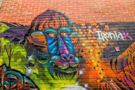 back alley: MELBOURNE, AUSTRALIA - MARCH 21, 2015: Colorful graffiti in back alley of downtown, depicts an face of a monkey. Editorial