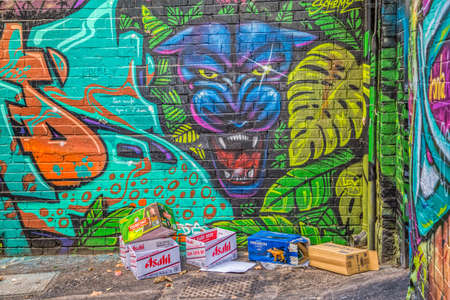 back alley: MELBOURNE, AUSTRALIA - MARCH 21, 2015: Colorful graffiti in back alley of downtown, depicts an face of a panther.