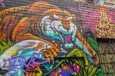 back alley: MELBOURNE, AUSTRALIA - MARCH 21, 2015: Colorful graffiti in back alley of downtown, depicts an face of a tiger. Editorial