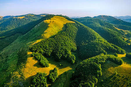 weald: Helicopter aerial photo of the forest on the plateau on the mountain in Montenegro.