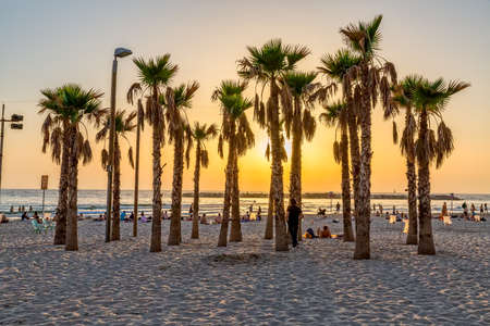 TEL AVIV, ISRAEL - JUNE 18, 2015: People enjoying the sea sunset by the palm trees on the beach.