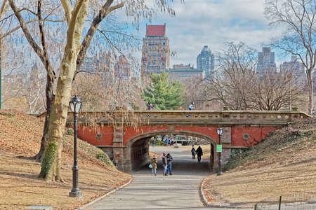 New York Central Park Driprock Arch bridge winter time Редакционное