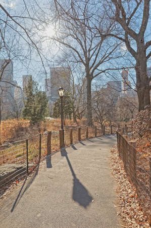 New York Central Park empty road in winter time
