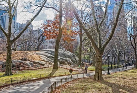 New York Central Park walkway in winter time