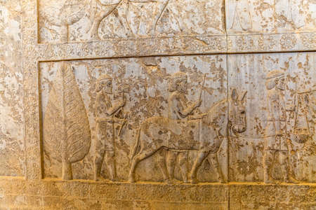 Stone bas-relief of residents of historical empire with animals carved on the stairway facade of the Apadana at the old city Persepolis.