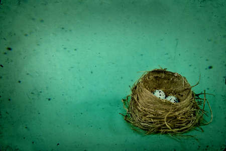 Birds Nest Rustic and Vintaged