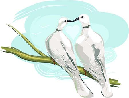 painterly: y Dovey Illustration
