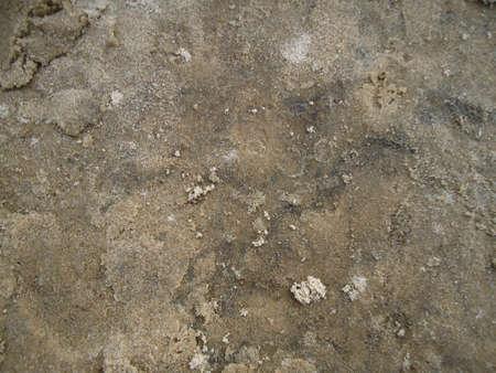 textura: spiaggia di sabbia nera nel fiume