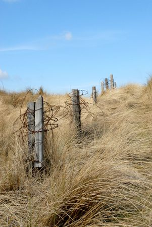 Old fence in the sand dunes beside the coast photo