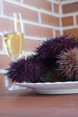 white wine glass: Sea urchin plate with white wine glass