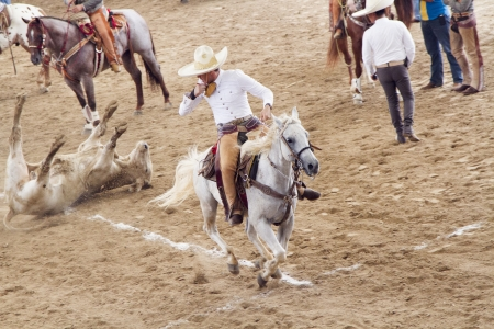 Mexican Charro Knocking Down Bull Editorial