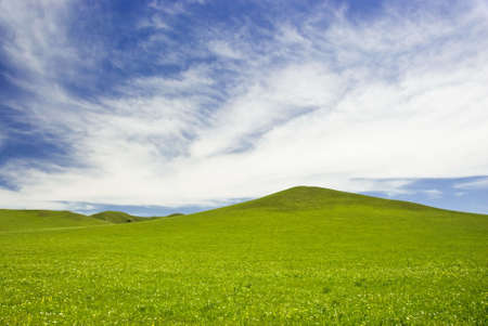 tableland: grassland