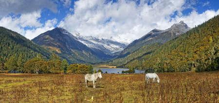 tableland: autumn tableland