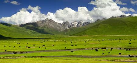 jokul: Qinghai-Tibet Plateau Stock Photo