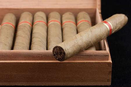 Los cigarros holandeses en una caja de madera