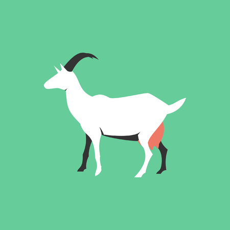 Goat in flat style