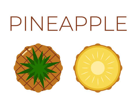 Pineapple, Ananas and sliced half of Pineapple, Ananas on white background Ilustracja