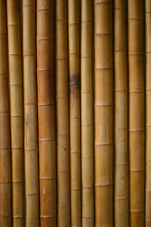 japones bambu: japon�s de bamb� de fondo Foto de archivo