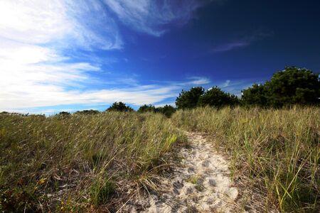 Beach path to blue sky