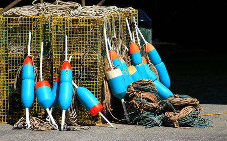 Lobster cage buoys photo