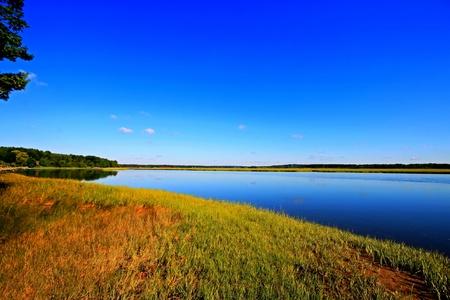 Calm marsh 2 HDR Stock Photo - 13513350