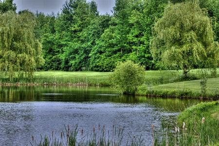 Golf scenery