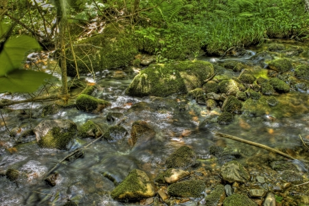 Flowing creek 2 photo